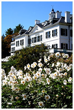 wharton_the-mount-with-japanese-anenomes-by-david-dashiell.jpg